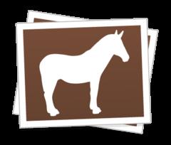 Custom-rectangle-stickers_1477053420