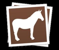 Custom-square-stickers